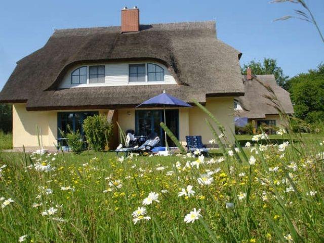 Rügen Feriendorf Puddemin Doppelhaushälfte In Puddemin Camping